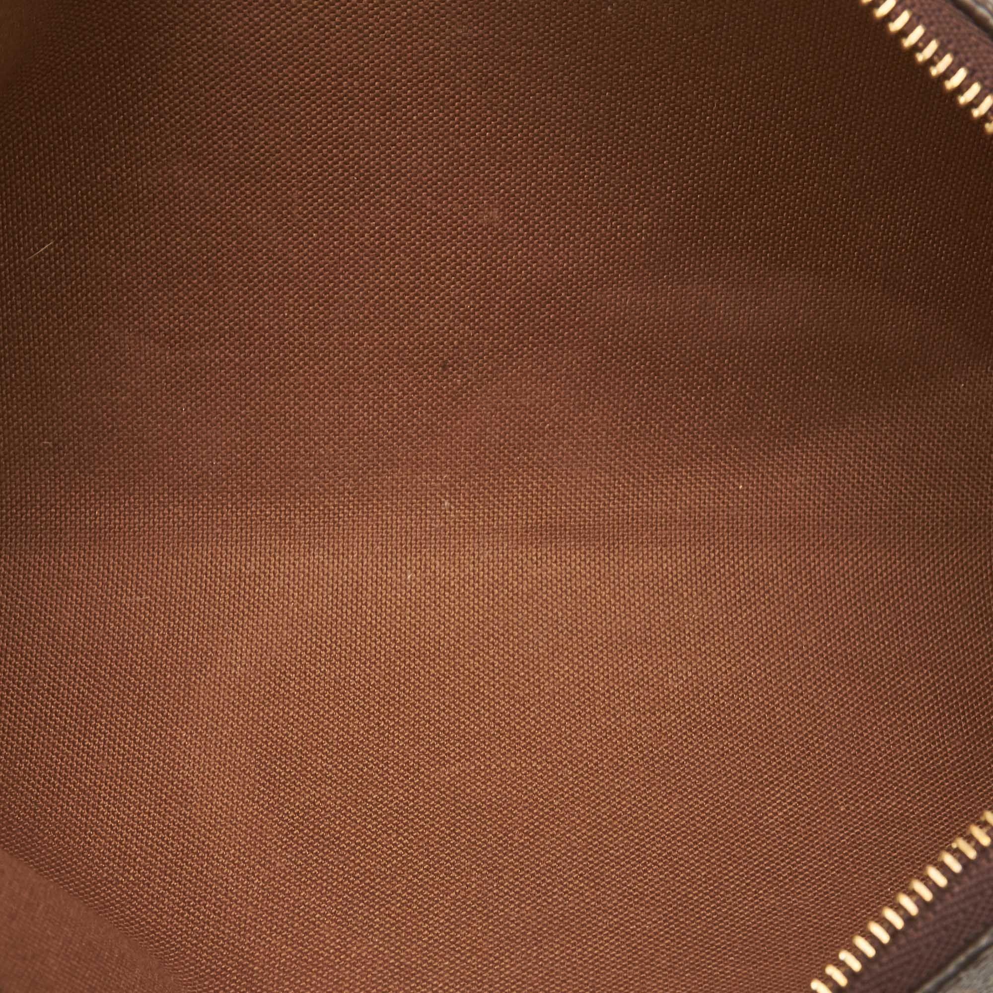 Vintage Louis Vuitton Monogram Eva Brown
