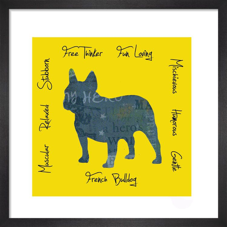 French Bulldog - Dog Trait