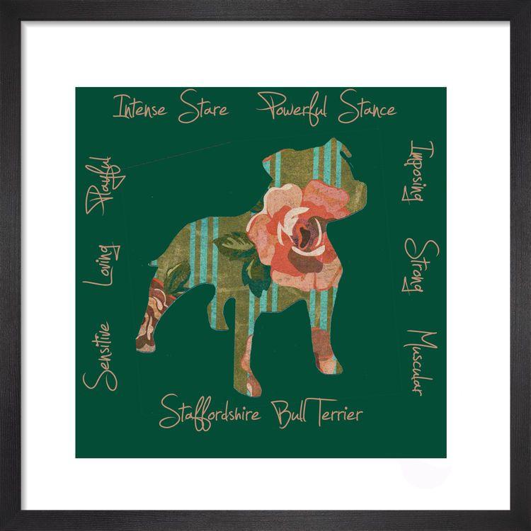 Staffordshire Bull Terrier - Dog Trait