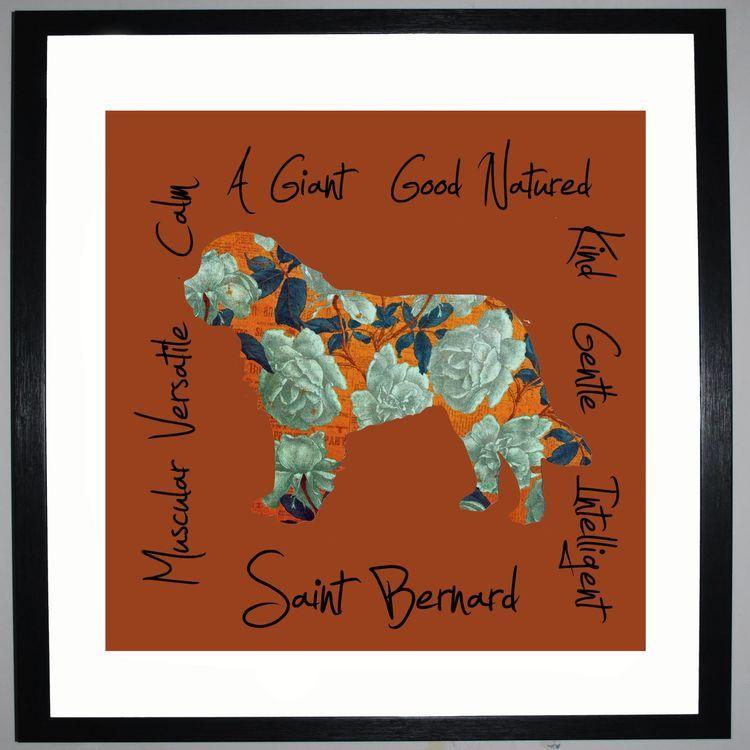 Saint Bernard - Dog Trait