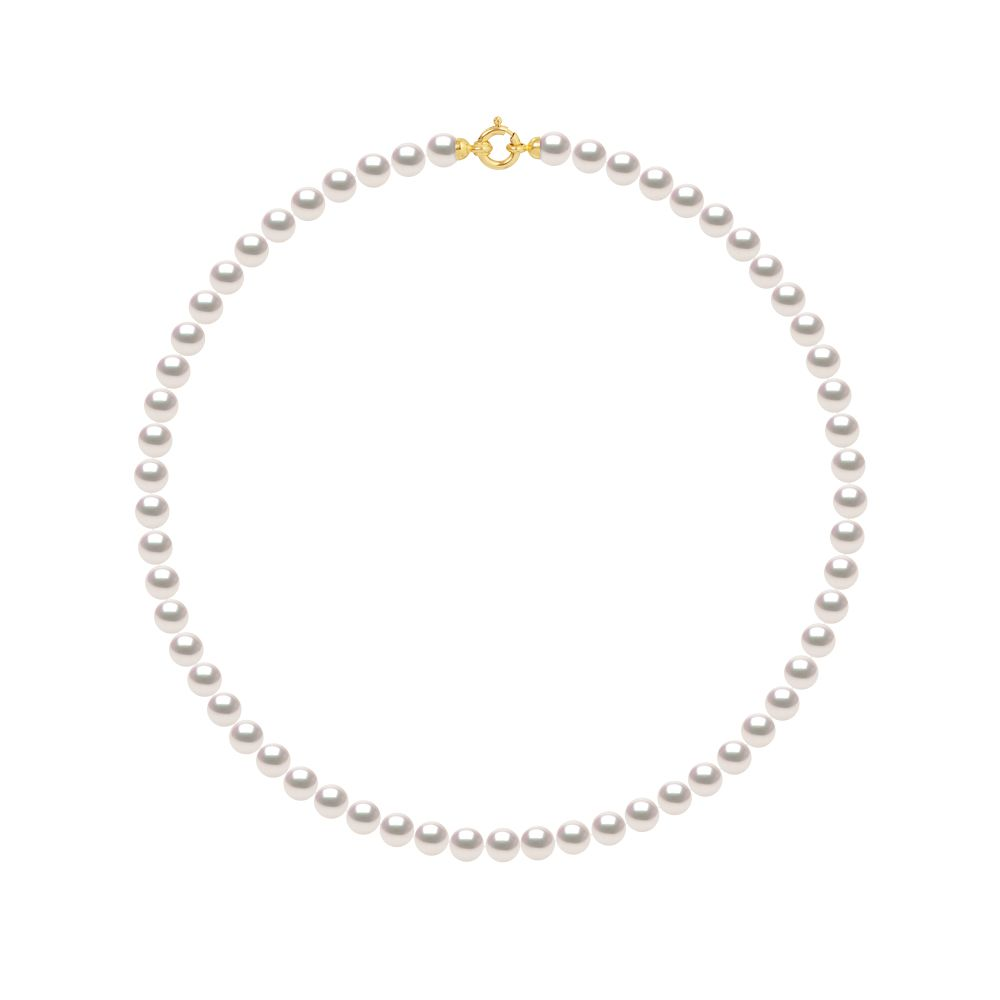 DIADEMA - Necklace - Real Japanese Akoya Cultured Pearl - Yellow Gold