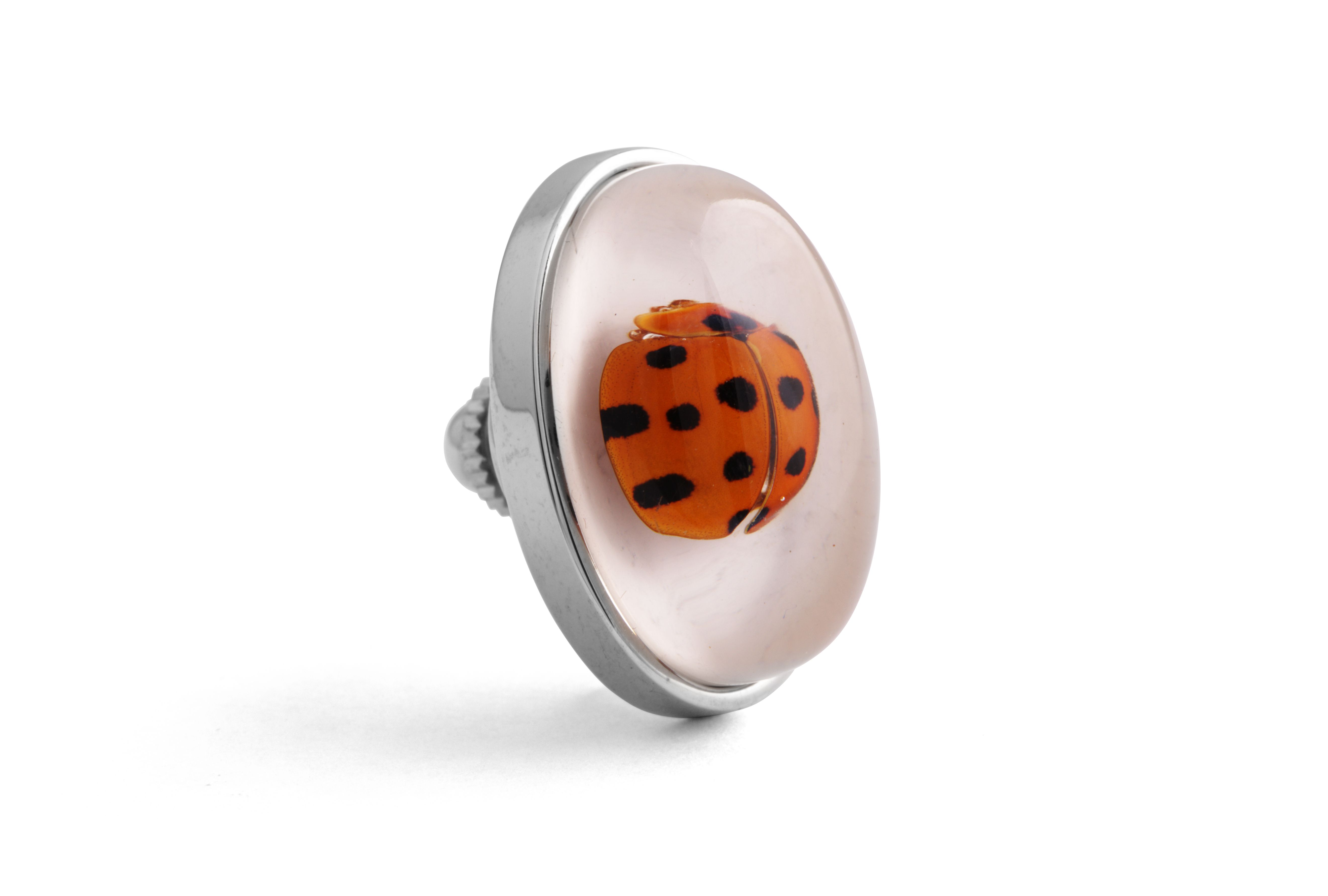 Rhodium  Resin  Clear  Oval  Ladybug Deadly Creatures Pin