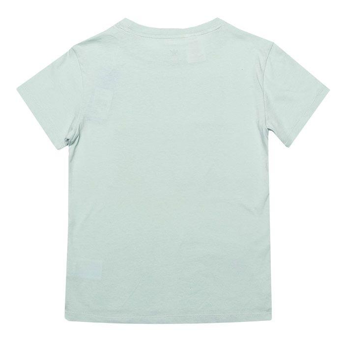 Boy's adidas Originals Junior Trefoil T-Shirt in Green