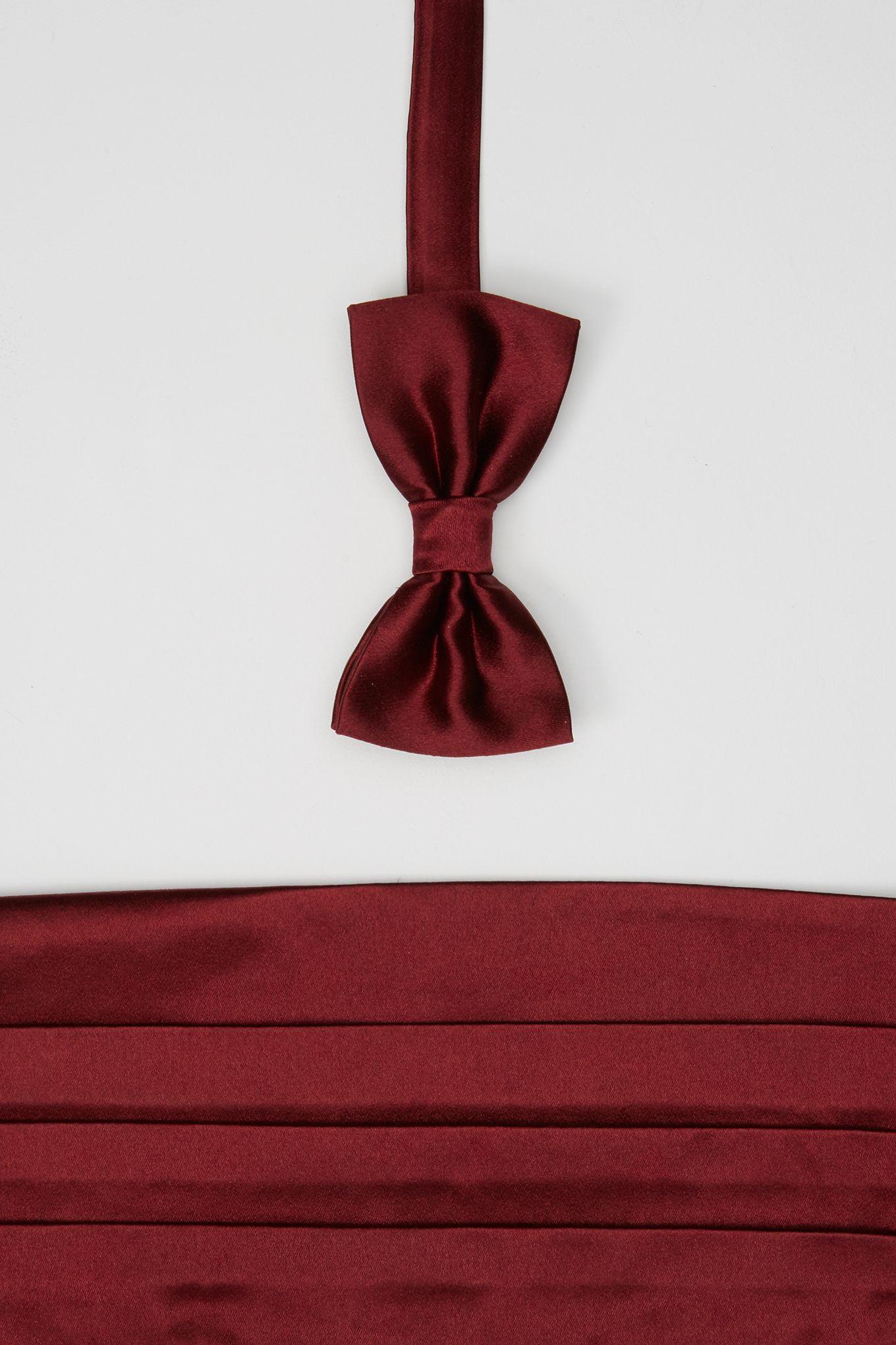 Cummerbund and Bow Tie Set