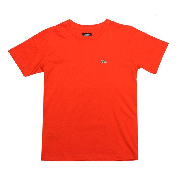 Boy's Lacoste Junior Crew Neck T-Shirt in Orange