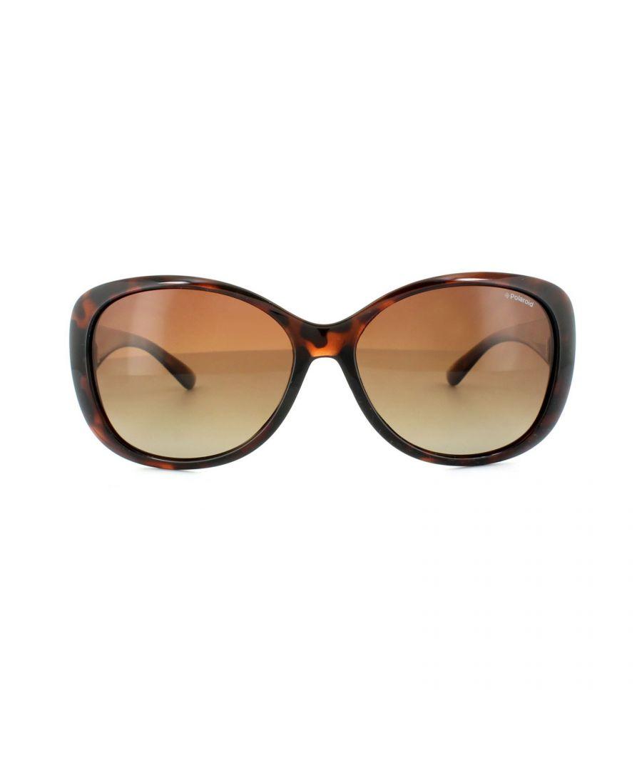Image for Polaroid Sunglasses P8317 0BM LA Havana Brown Gradient Polarized