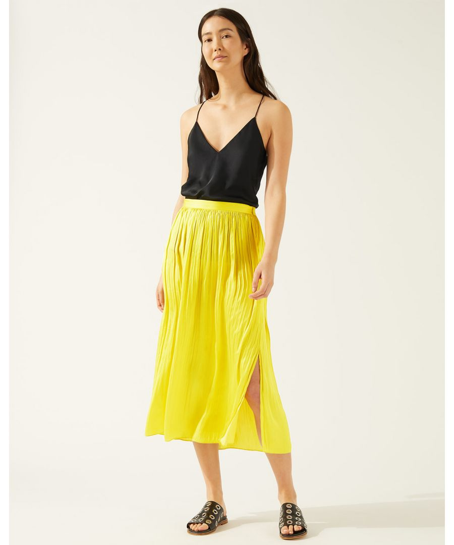 Image for Crocus Drape Pleated Skirt