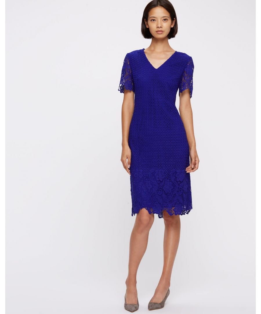 Image for Engineered Lace Dress