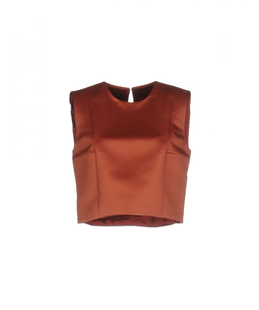 Image for Pinko Rust Cropped Top