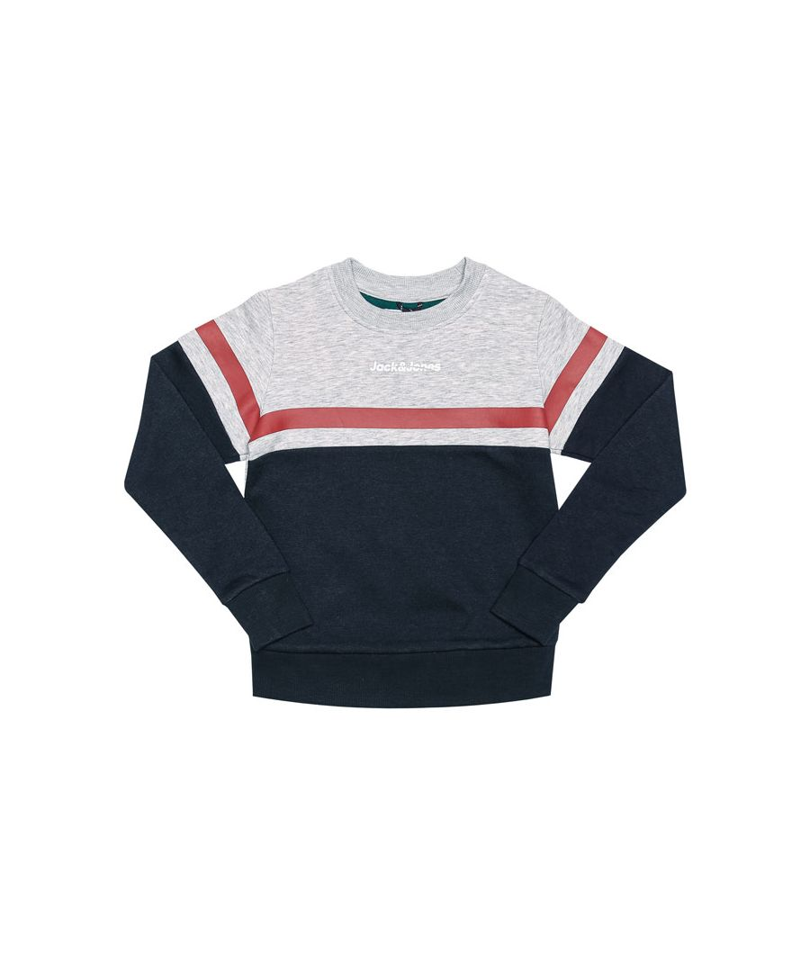 Image for Boy's Jack Jones Junior Caine Crew Sweat in Grey Marl