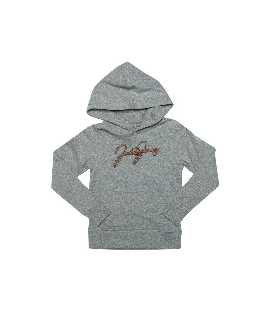 Image for Boy's Jack Jones Junior Dusto Hoody in Grey Marl