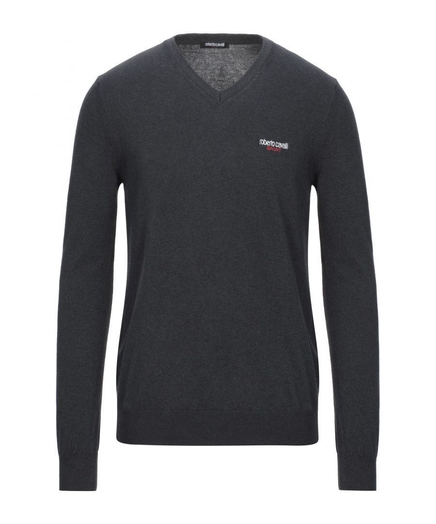 Image for Roberto Cavalli Sport Steel Grey Jumper
