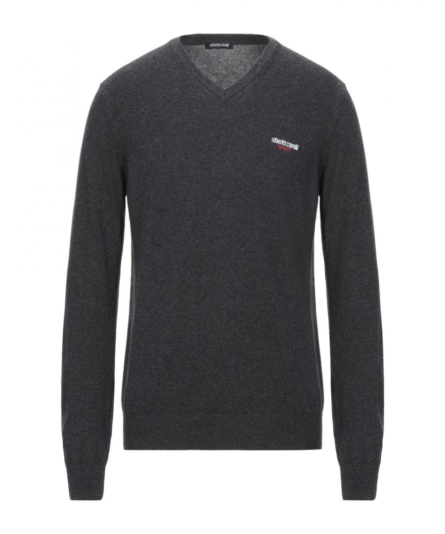 Image for Roberto Cavalli Sport Steel Grey Jumper