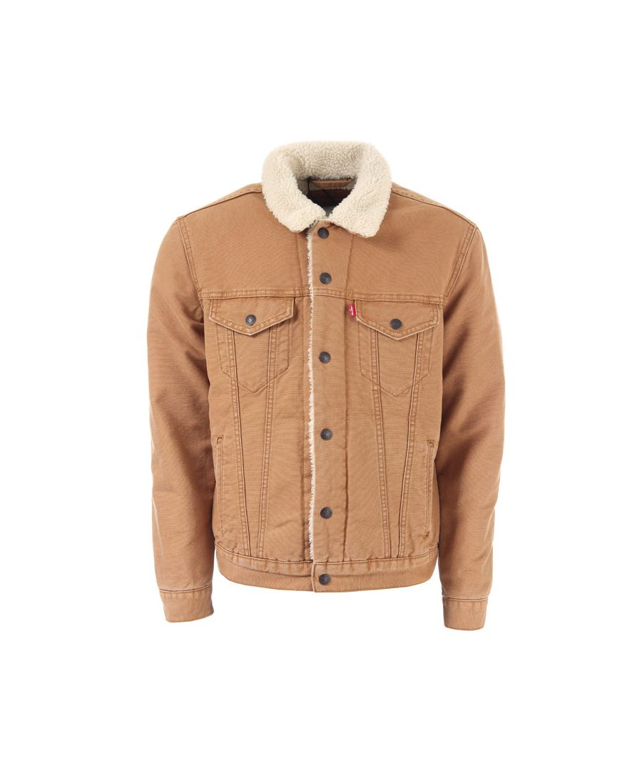 Image for Men's Levis Type 3 Sherpa Jacket in Brown
