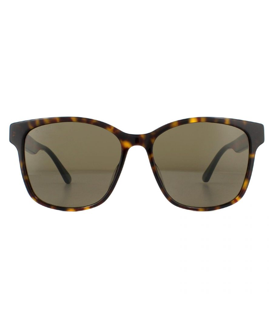 Image for Gucci Sunglasses GG0417SK 003 Havana with Green and Red Stripe Brown