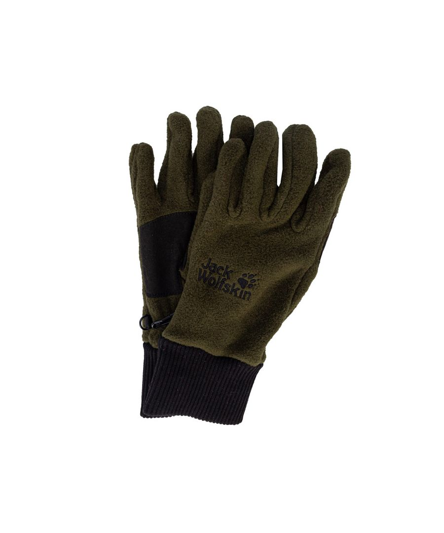 Image for Accessories Jack Wolfskin Vertigo Glove in Green