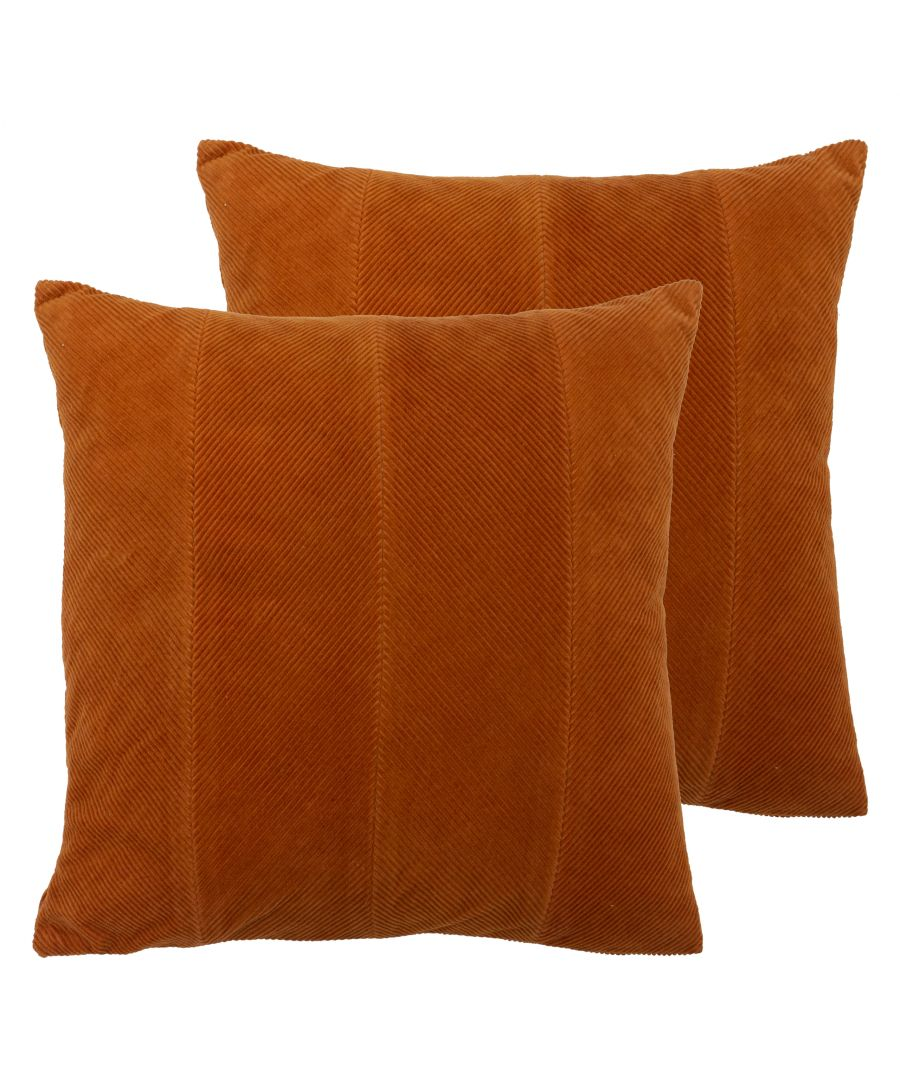 Image for Jagger Cushions (Twin Pack)