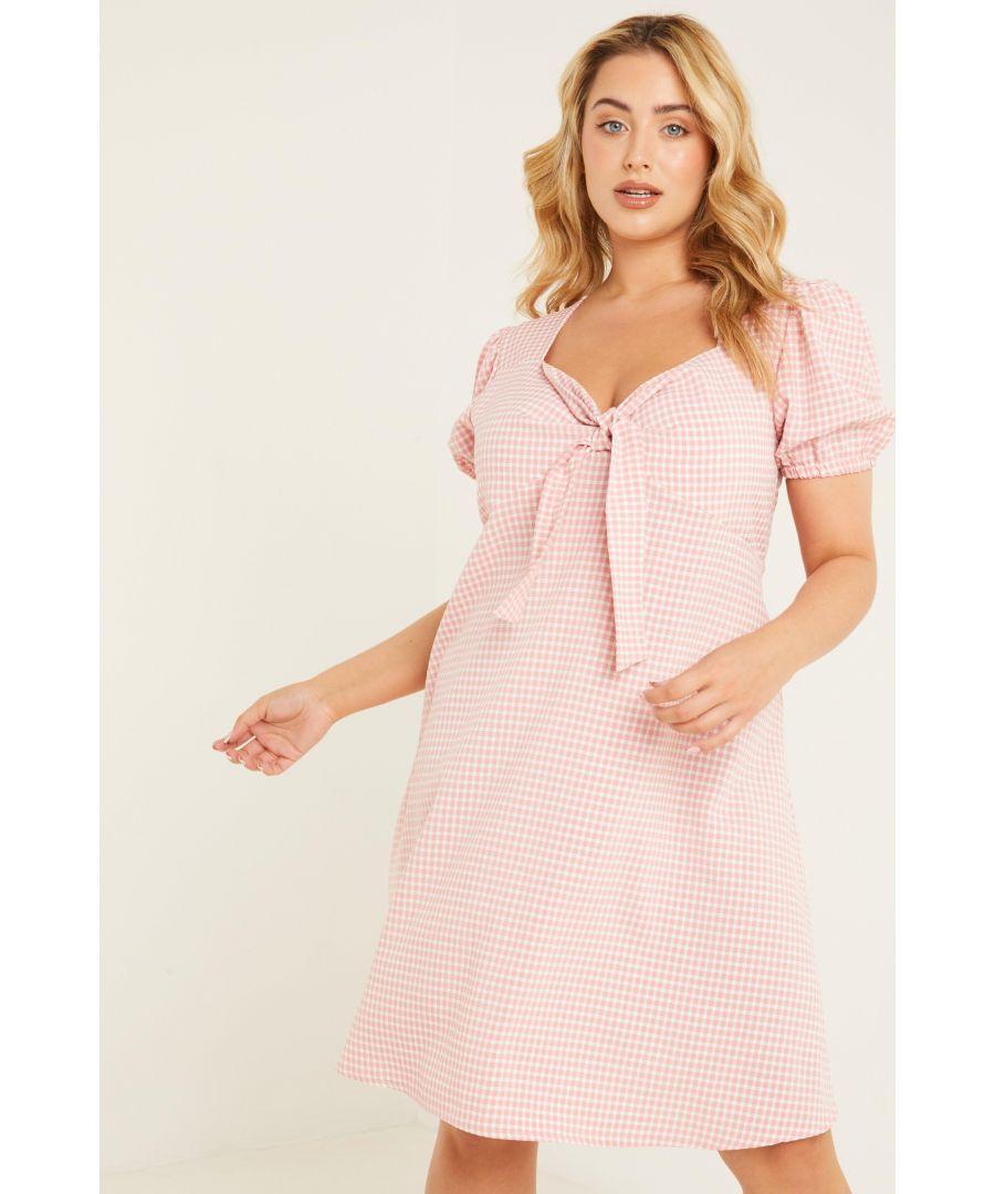 Image for Curve Pink Gingham Skater Dress
