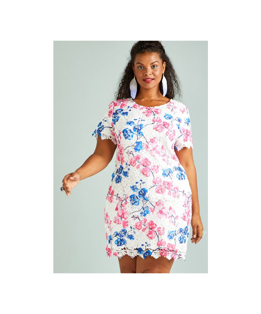 Image for Pink Yumi Curves Blossom Print Lace Tunic