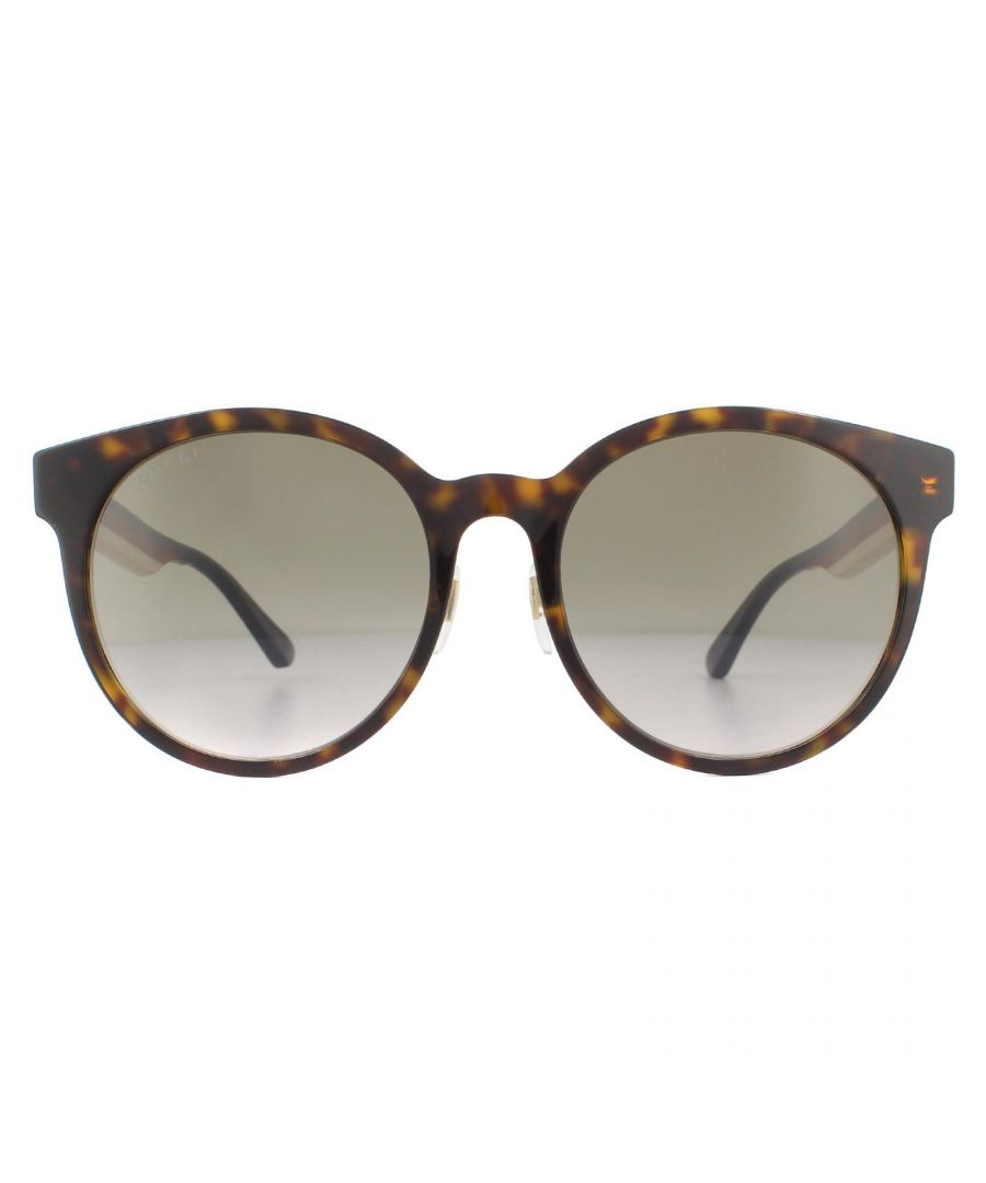 Image for Gucci Sunglasses GG0416SK 003 Havana with Blue Red and White Stripe Brown Gradient