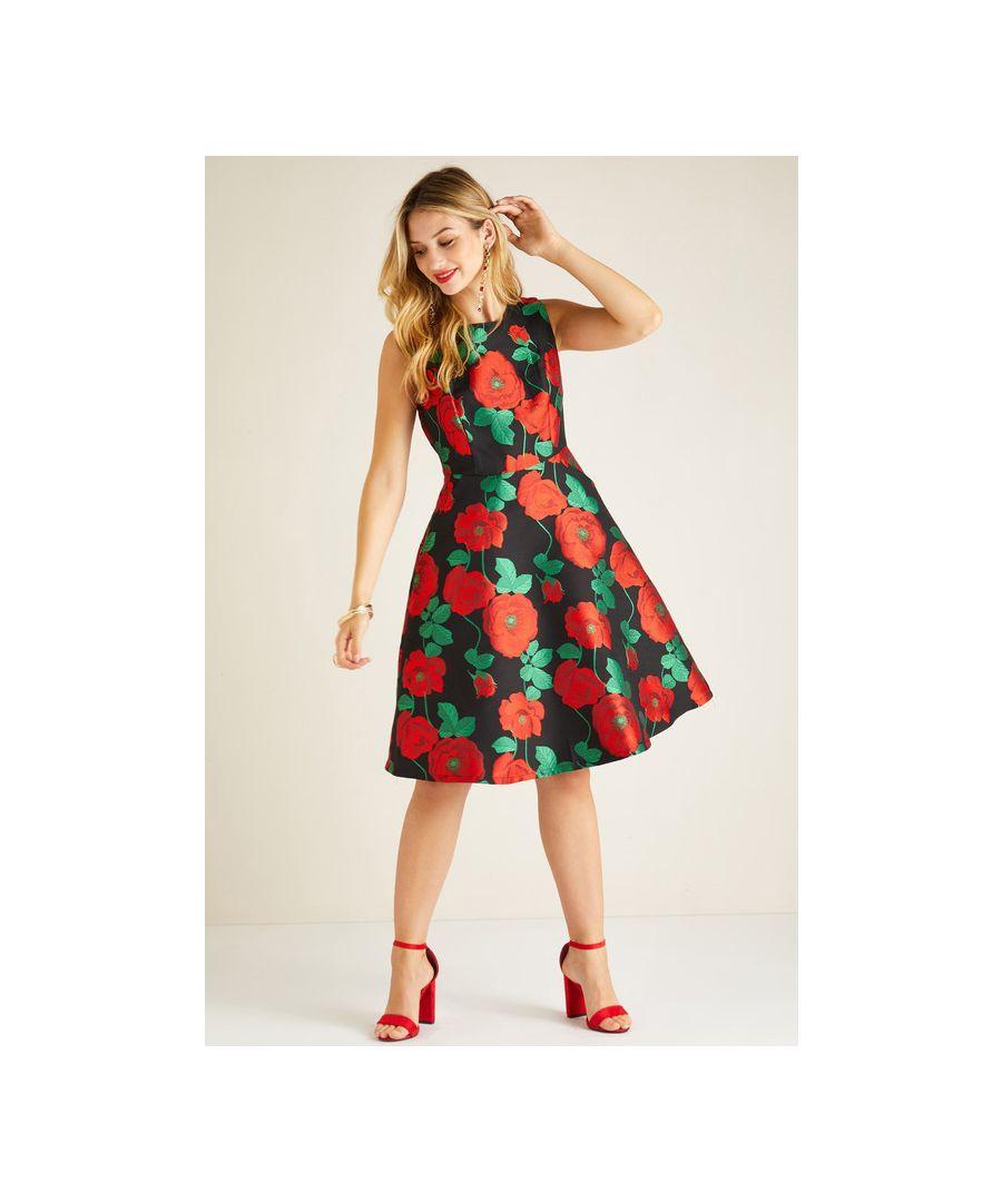 Image for Multi Jacquard Rose Dress