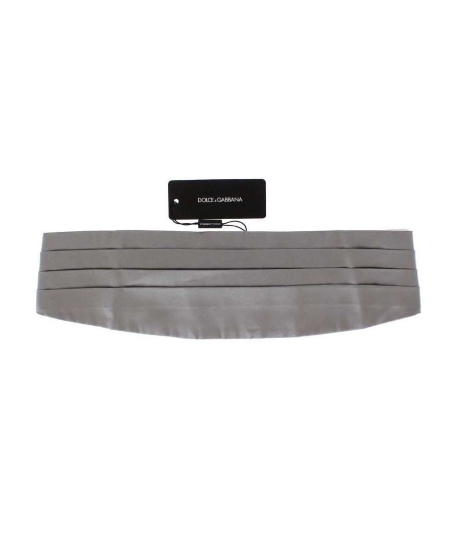 Image for Dolce & Gabbana Silver Wide Belt Silk Cummerbund