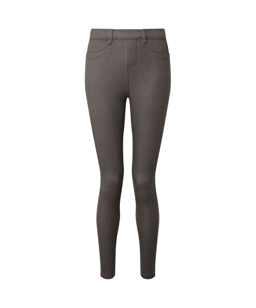 Image for Asquith & Fox Womens/Ladies Classic Fit Jeggings (Slate)