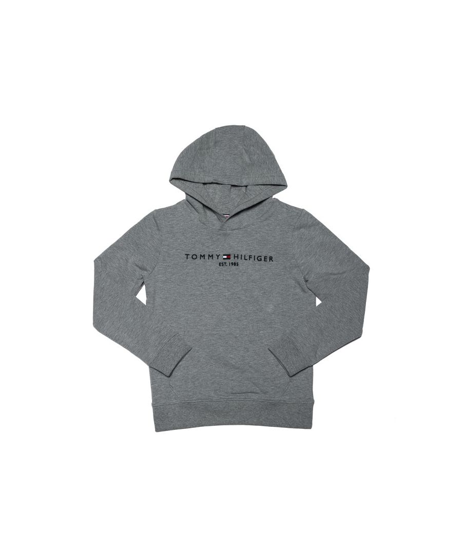 Image for Boys' Tommy Hilfiger Junior Essential Hoodie in Grey Heather