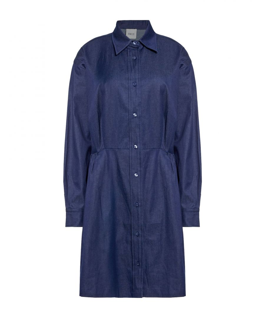 Image for Edit Blue Denim Shirt Dress