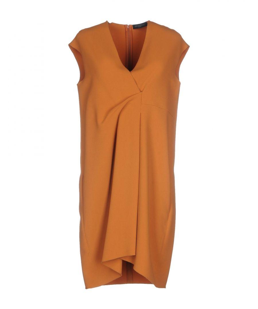 Image for Antonelli Camel Crepe Short Sleeve Dress