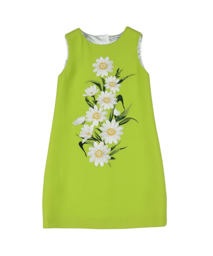 Image for DRESSES Dolce & Gabbana Light green Girl Wool