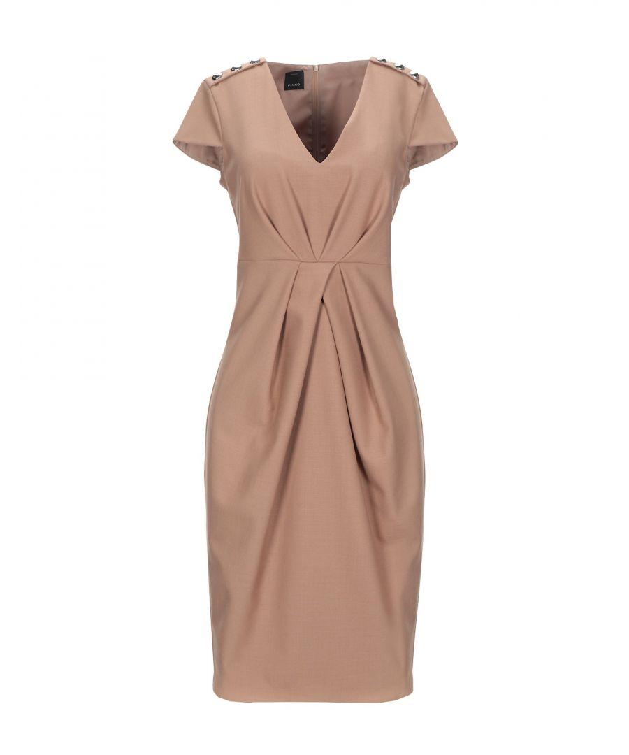 Image for Pinko Camel Short Sleeve Knee Length Dress