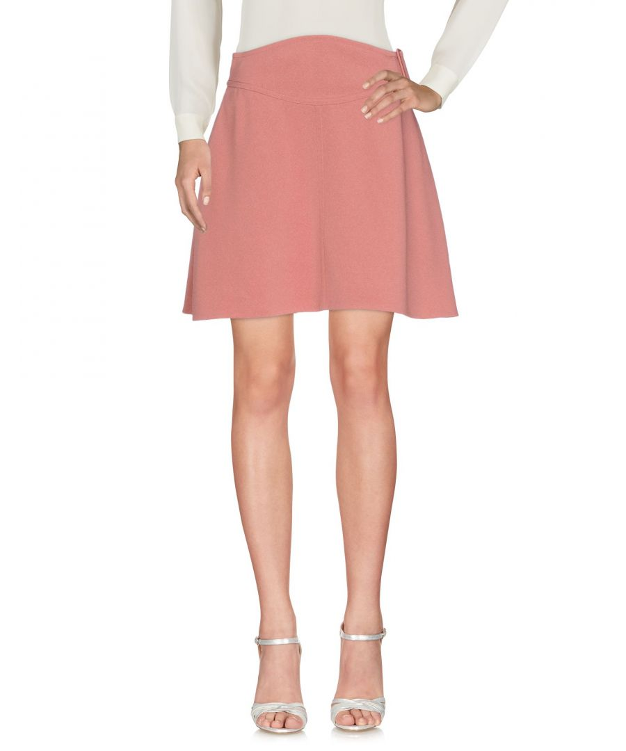 Image for SKIRTS Carven Pastel pink Woman Acrilyc