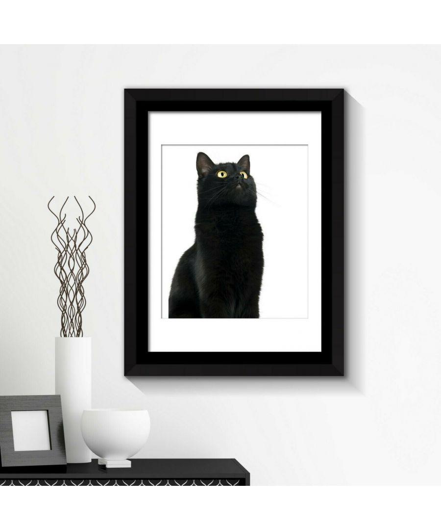 Image for Combo of  Framed Art 2in1 Cute Black Cat Poster Framed Photo, Framed Art