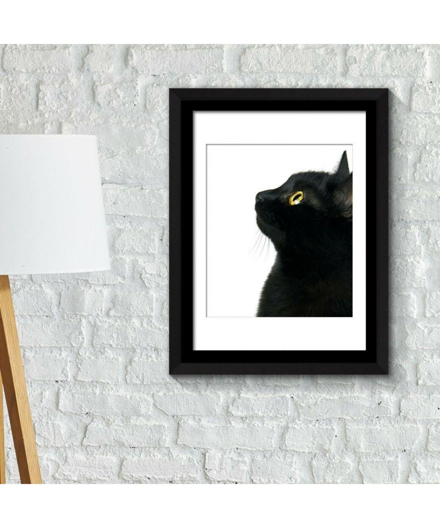 Image for Framed Art 2in1 Poster - Black Cat focus Framed Photo, Framed Art