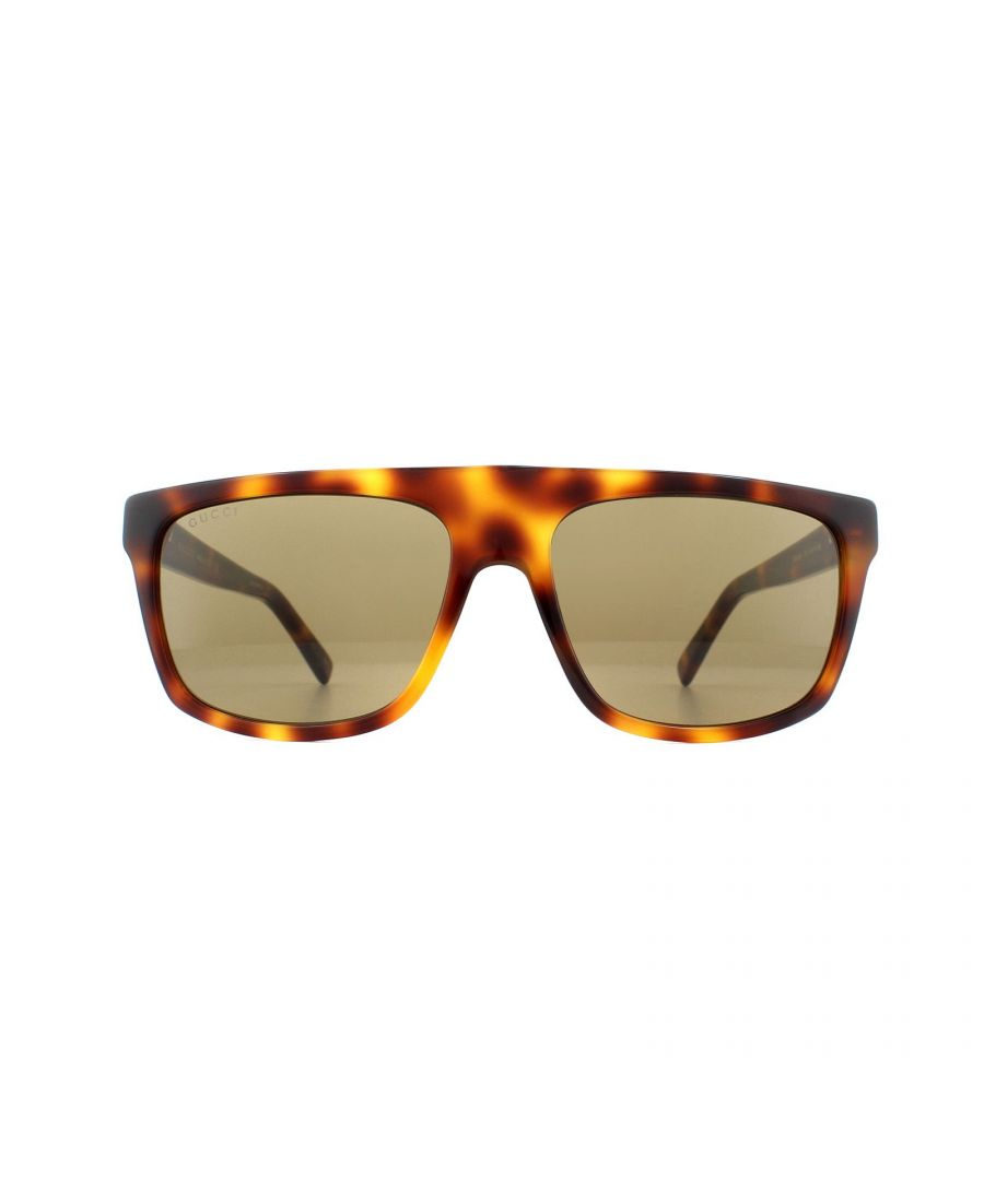 Image for Gucci Sunglasses GG0450S 003 Havana Brown