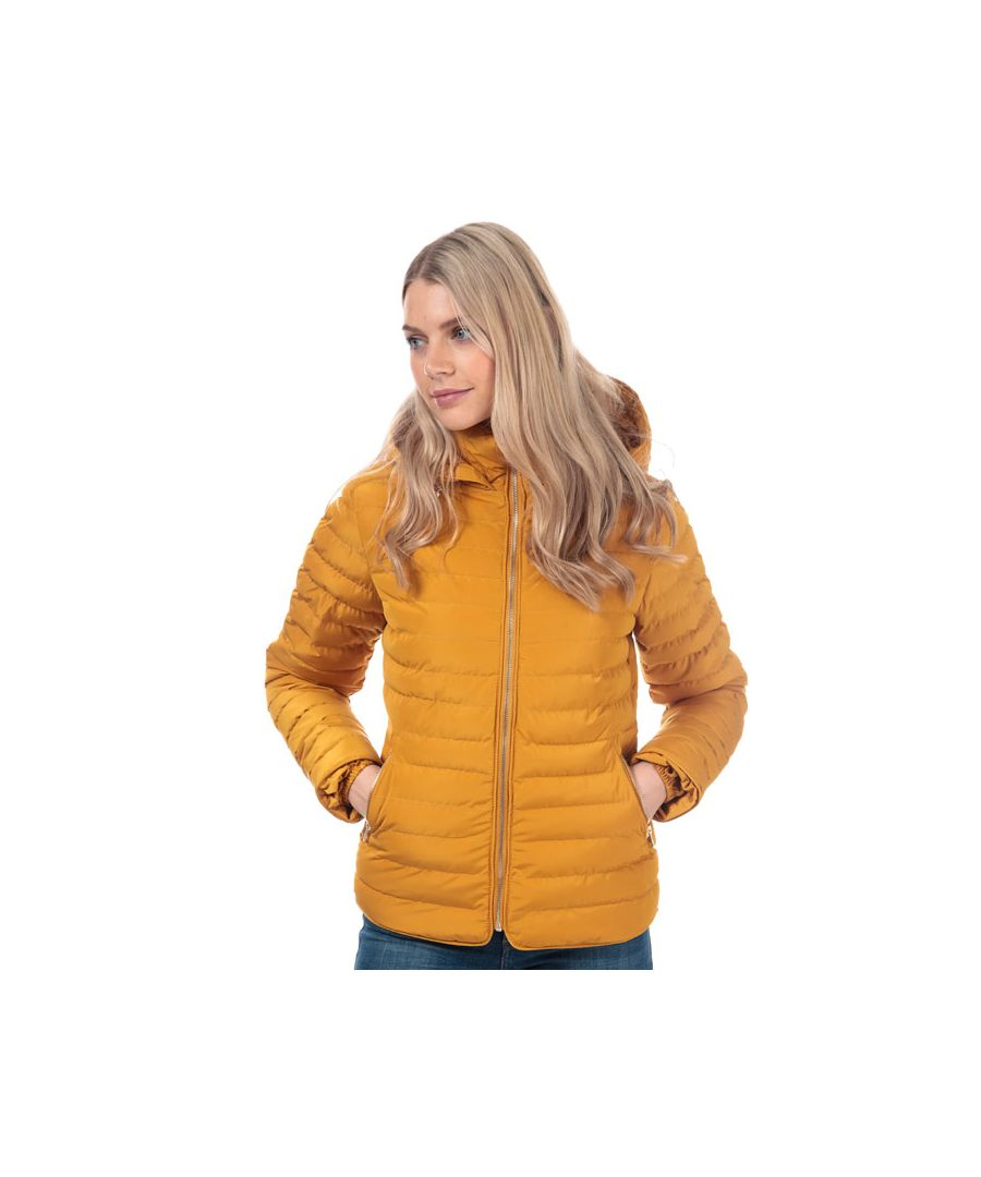Image for Women's Tokyo Laundry Ginger Jacket in Gold
