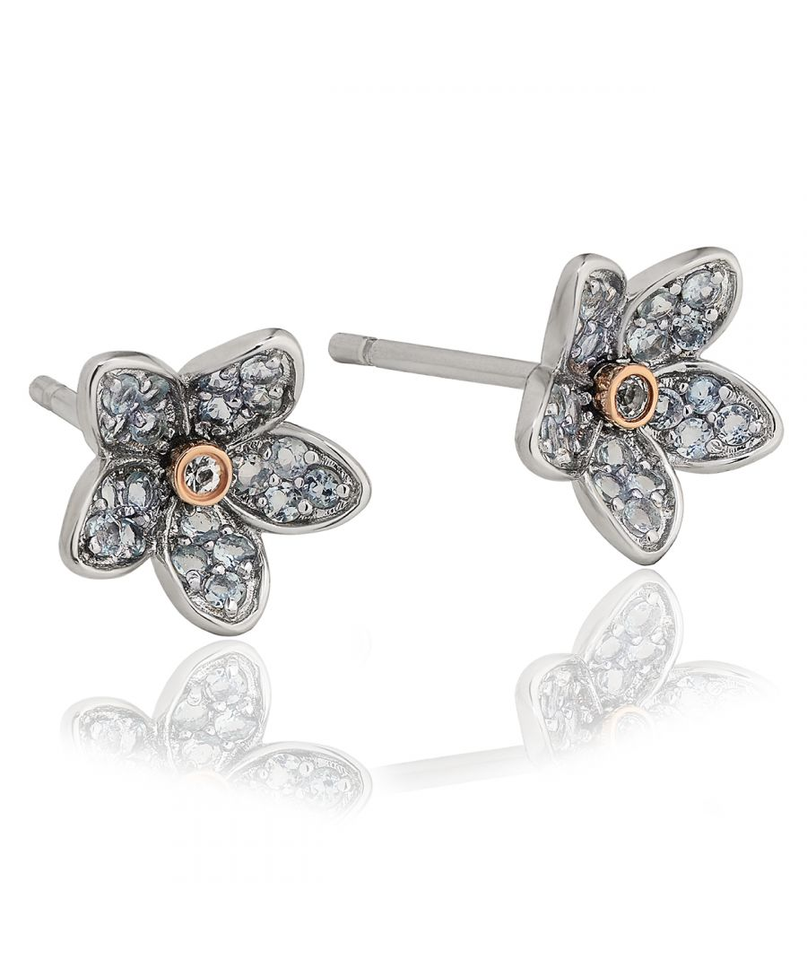 Image for Forget Me Not Stud Earrings