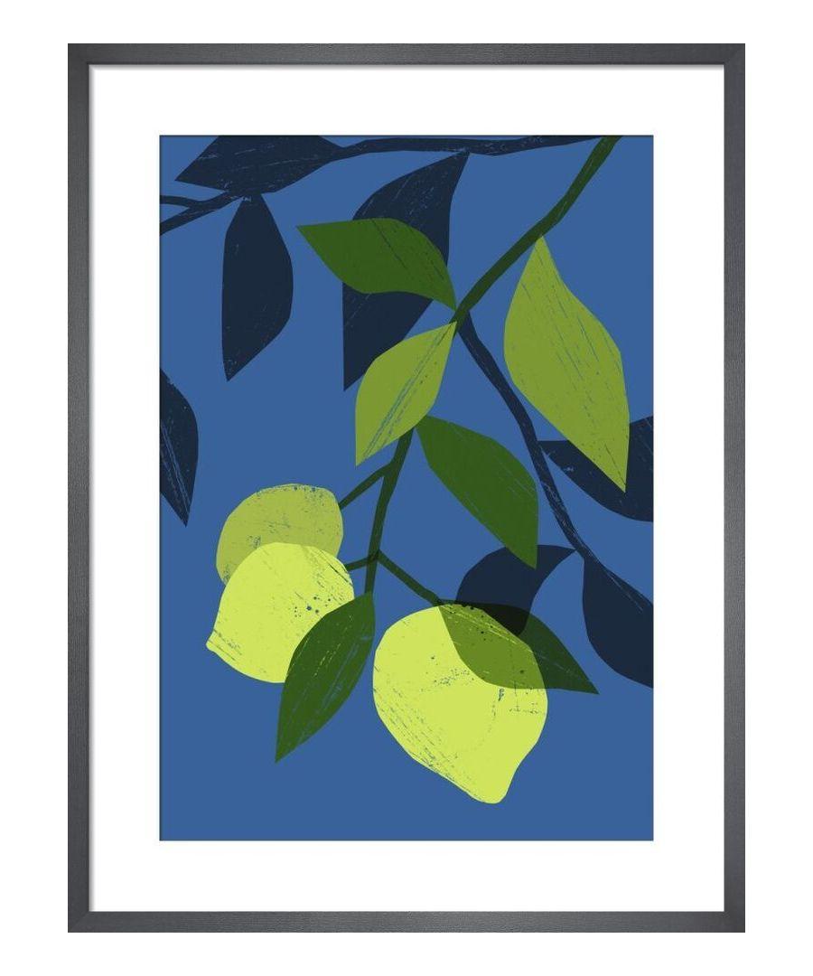 Image for Limes by Ana Zaja Petrak
