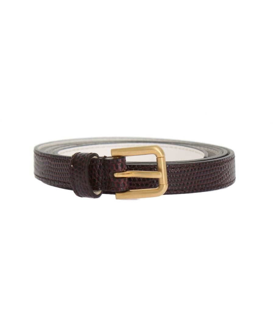 Image for Dolce & Gabbana Bordeaux Leather Gold Buckle Belt