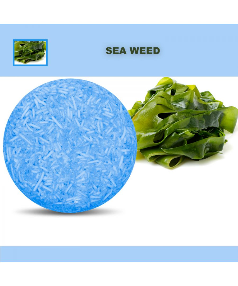 Image for Plant Essence Oil Shampoo & Conditioner Organic Handmade Soap Bar - seawead