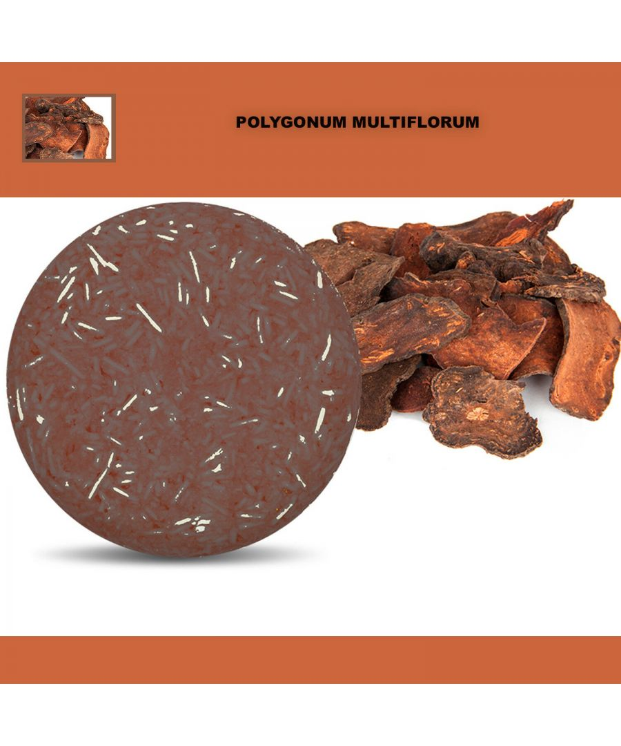 Image for Plant Essence Oil Shampoo & Conditioner Organic Handmade Soap Bar - Polygonum multiflorum