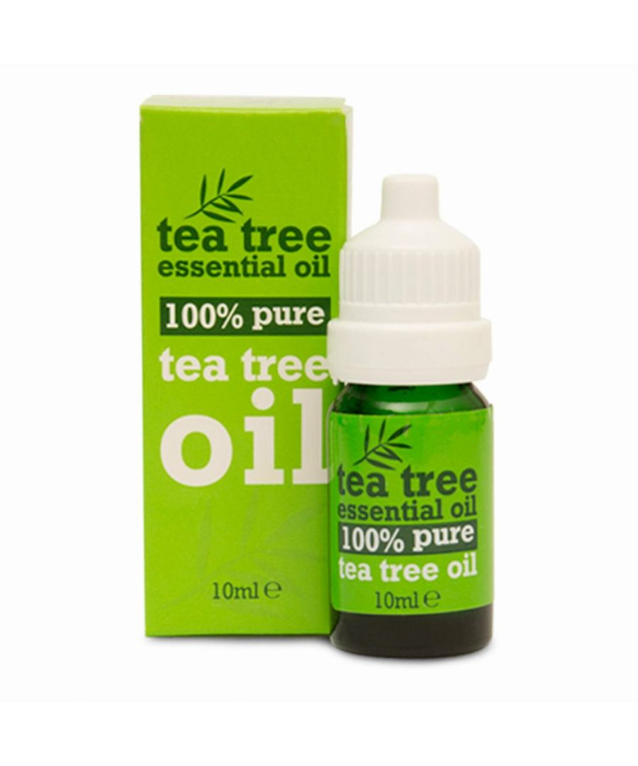 Image for Tea Tree Essential Oil for Aromatherapy 10ml