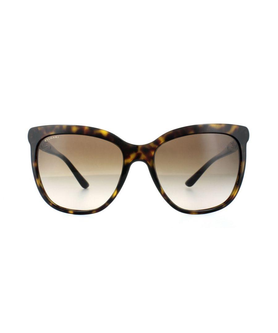 Image for Bvlgari Sunglasses 8173B 504/13 Dark Havana Brown Gradient