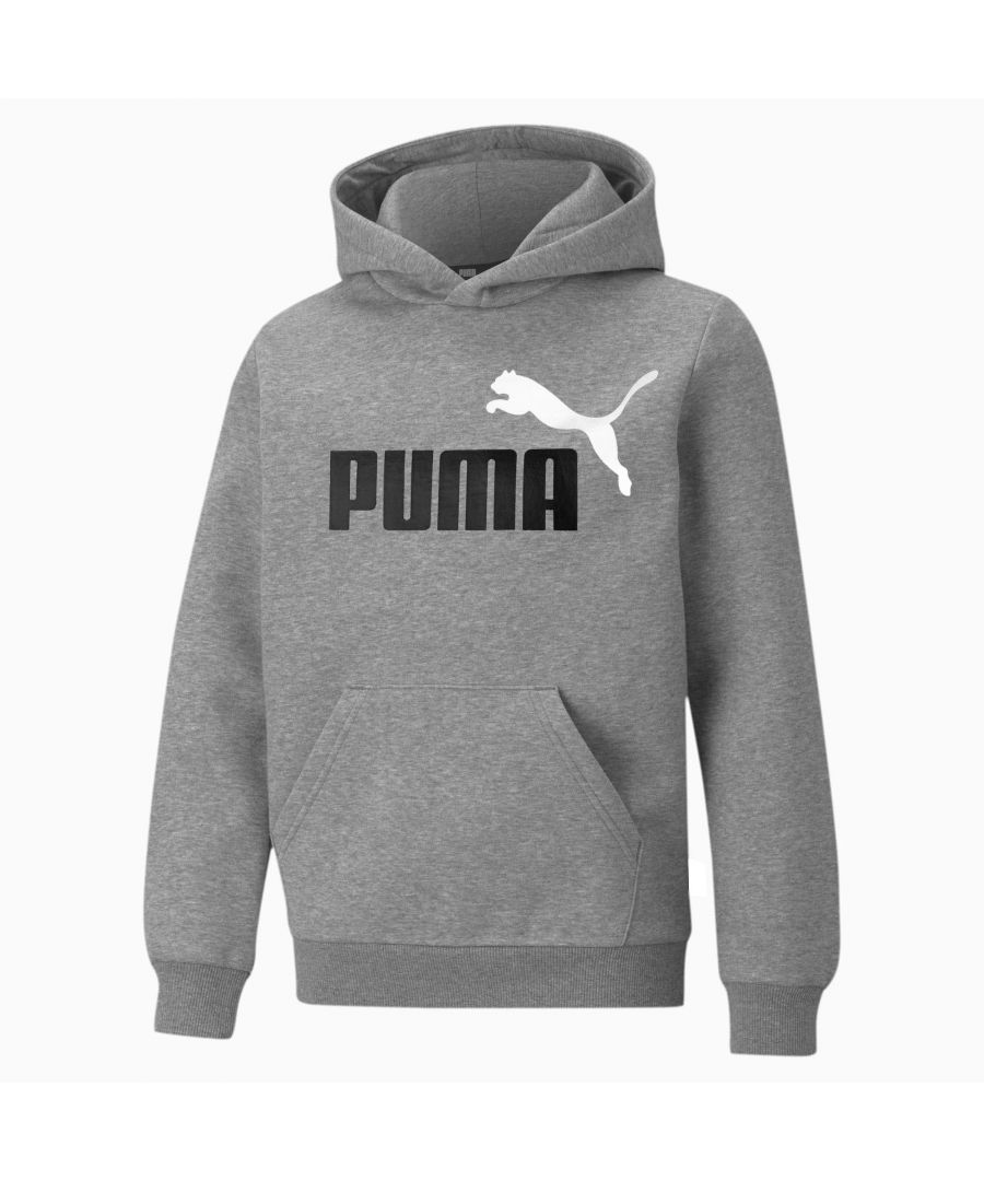Image for Puma Essential 2 Colour Logo Kids Over Head Hoodie Grey