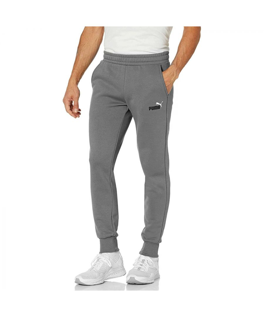 Image for Puma Essential 2 Colour Logo Mens Fleece Pant Grey - L