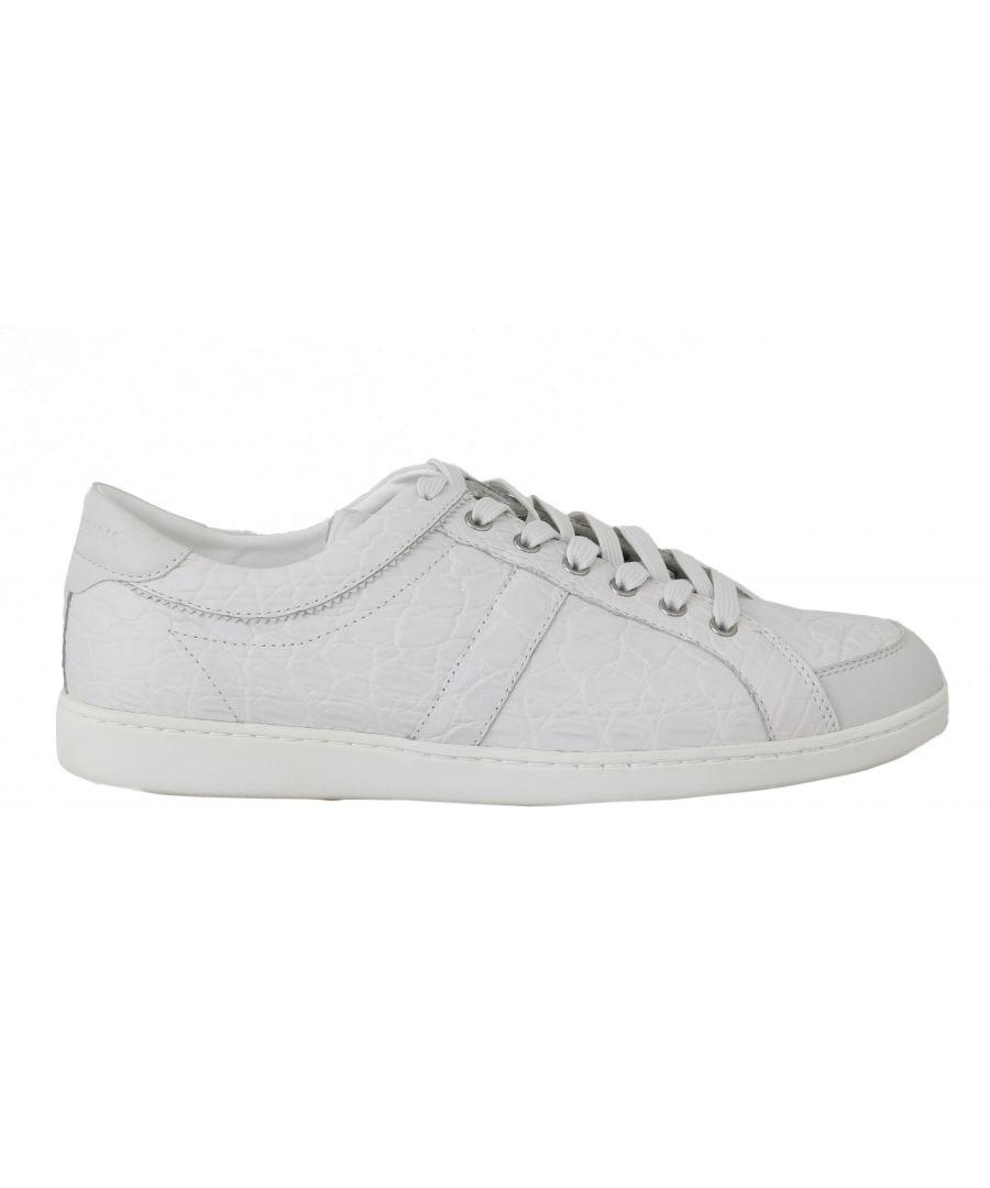 Image for Dolce & Gabbana White Caiman Crocodile Sneaker Shoes