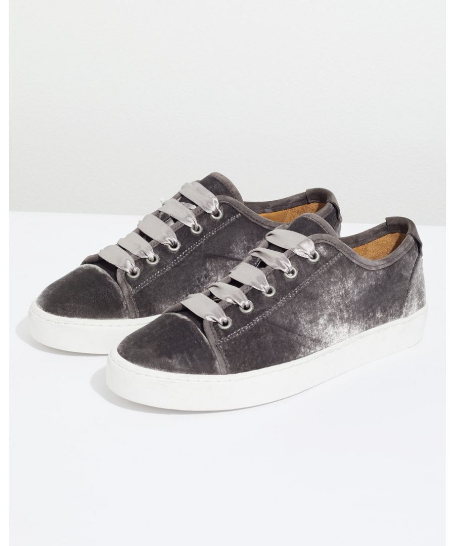 Image for Ayda Velvet Trainer
