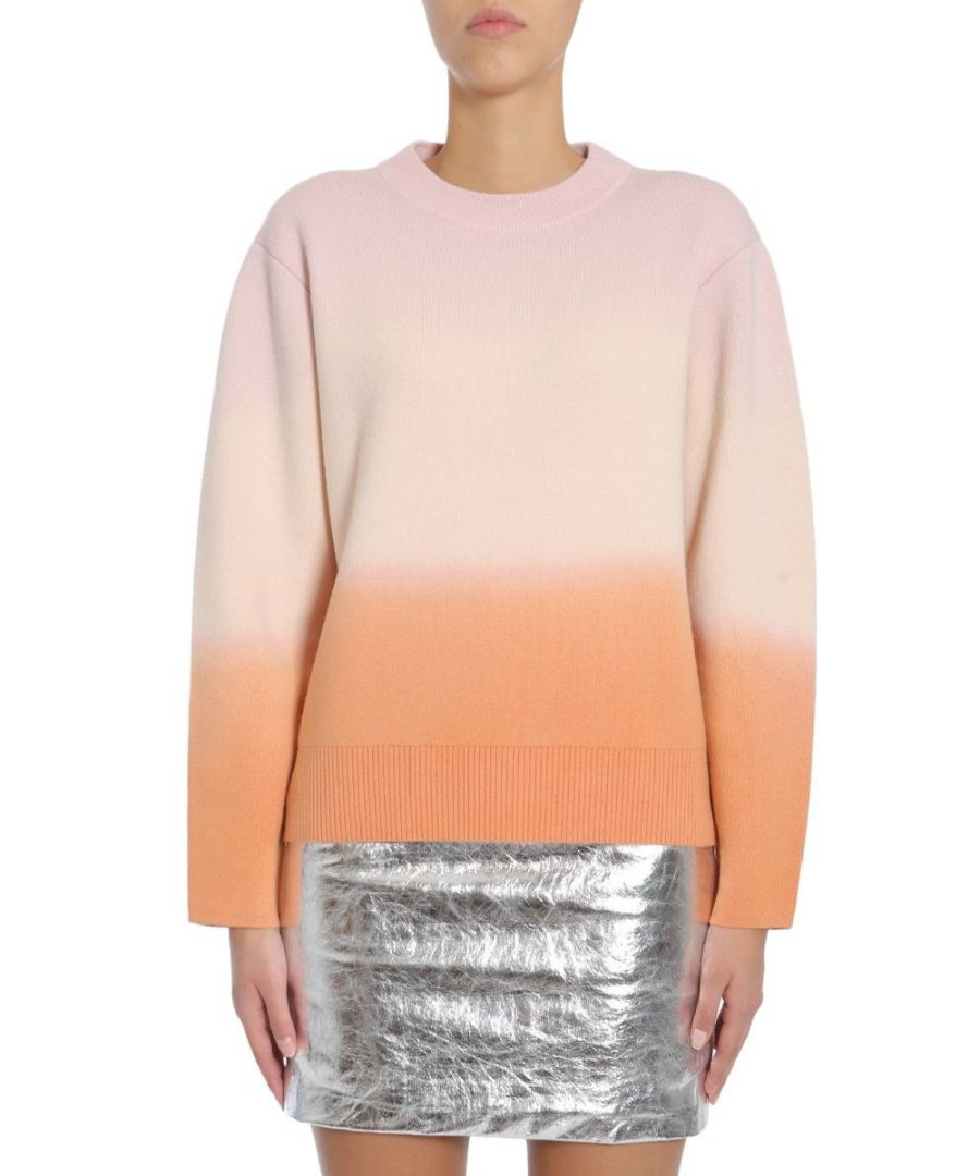 Image for PROENZA SCHOULER WOMEN'S R174787KW05910862 PINK WOOL SWEATER