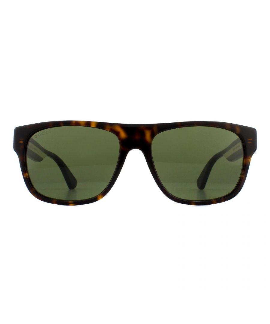 Image for Gucci Sunglasses GG0341S 003 Havana Green